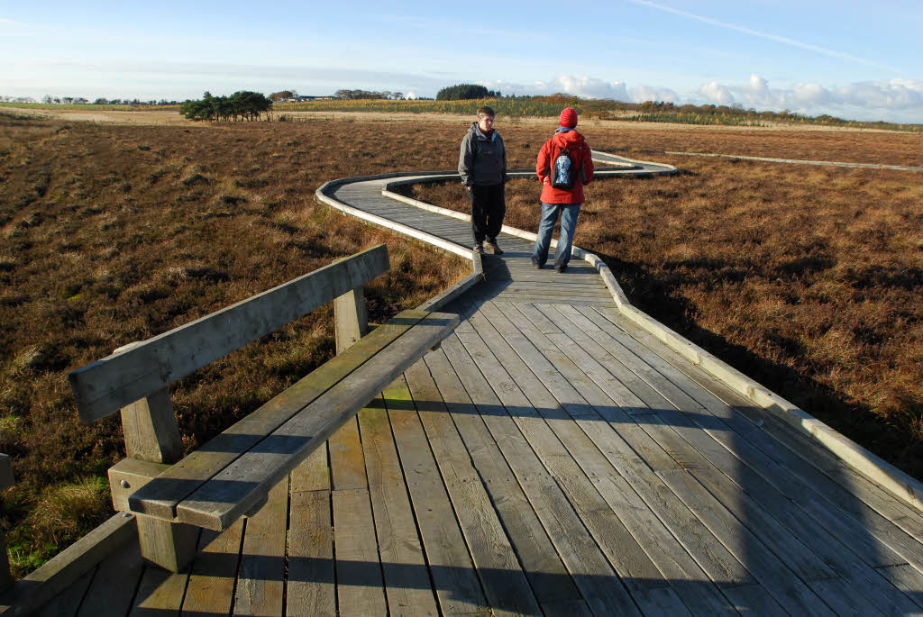 Two people walk along a boardwalk across a peat bog, which is bathed in low sunlight.
